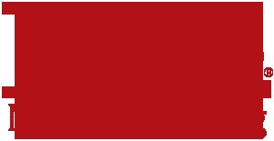 Lingo Manufacturing Logo